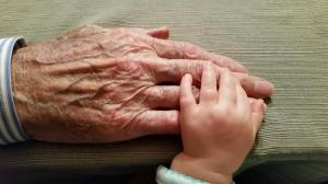 grandparent, grandfather, grandmother, granddaughter, grandchild, grandson, intergenerational, older adult hand, senior hand, old man hand, old and young, holding hands